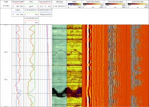 2SAA-1000-F WellCAD Sonic Module