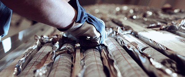 core logging software