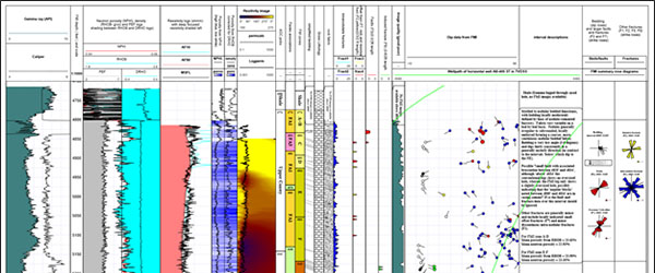 Petrophysical Software | Mount Sopris Instruments